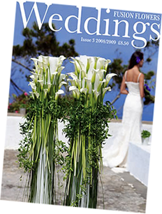 Weddings Issue 3